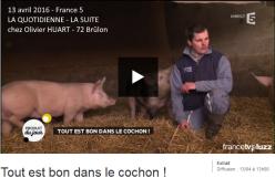 """Reportage de France 5 chez Olivier HUART, éleveur de porc fermier de la Sarthe à Brûlon, pour l'émission """"La Quotidienne, la suite"""", diffusée le 13 avril 2016"""