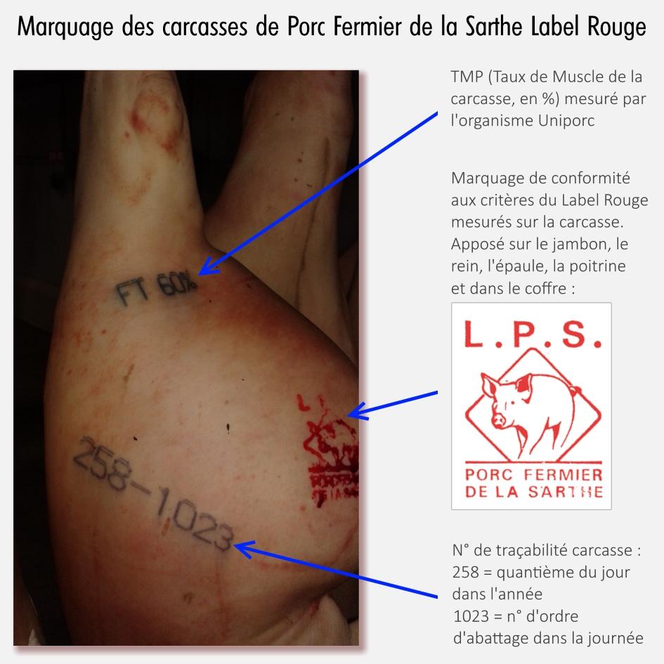 Photo des tampons apposés sur la carcasse de Porc Fermier Cénomans Label Rouge.